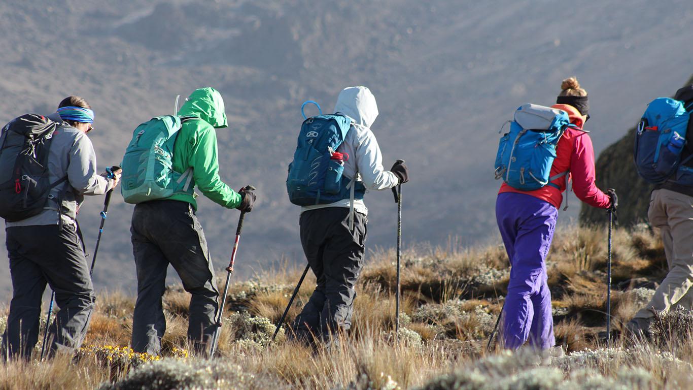 Kilimanjaro trekking tours